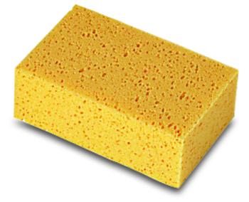 Sponges by Rubi